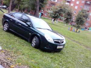 автомобиль на газоне
